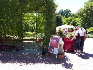 Erste Besucher am Stand des Stiftungsvereins informieren sich <br /> Copyright: Rolf Mücke, Grugapark